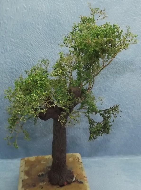 réalisation d'un arbre en stuco Dscf7763