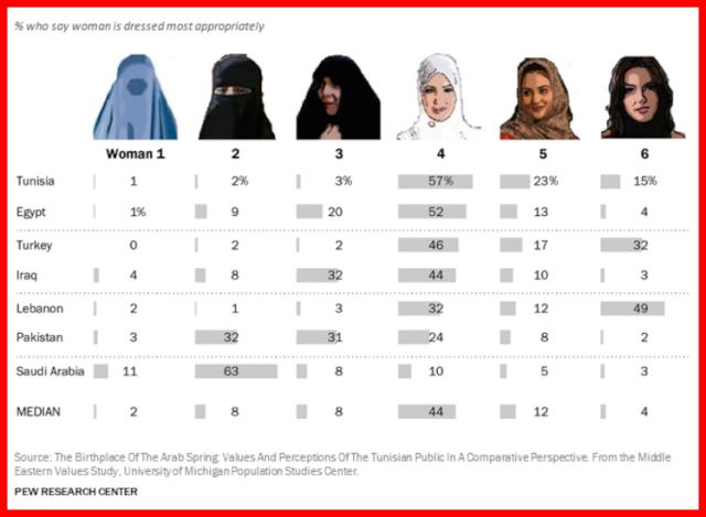 France : Le voile intégral, la burqa, le niqab... sont interdits en public ! 15132511