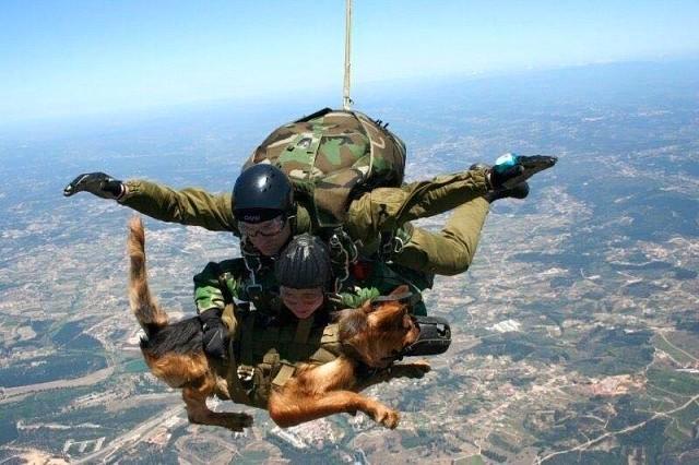 Ces soldats dont on parle si peu ! Image_72