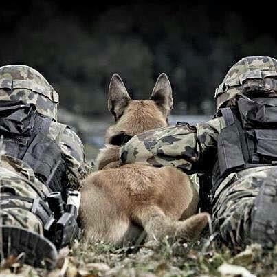 Ces soldats dont on parle si peu ! Image_74