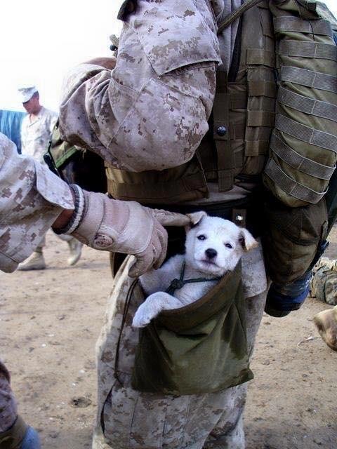 Ces soldats dont on parle si peu ! Image_78