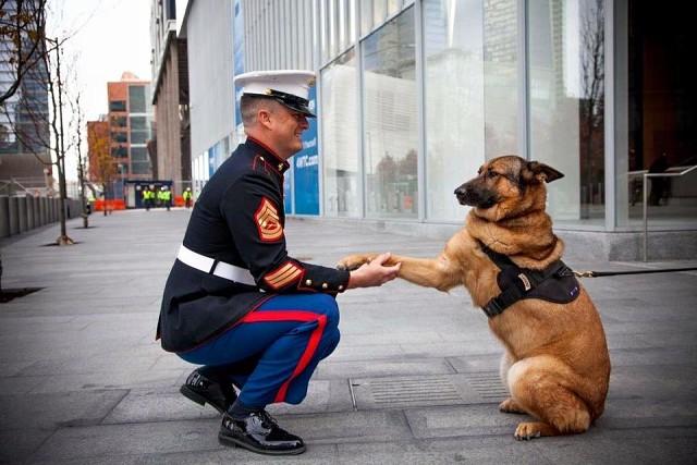 Ces soldats dont on parle si peu ! Image_79