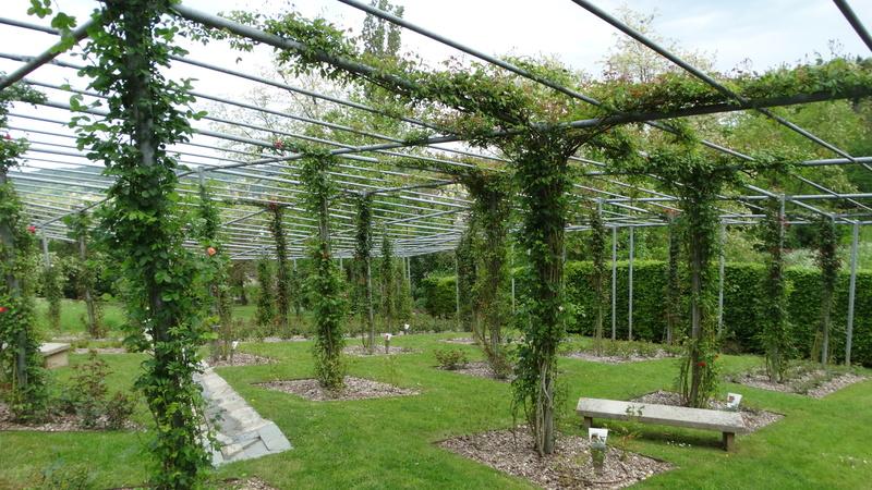 Le jardin de l'imaginaire Dsc04823