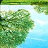 [ICONS TOURNAMENT]: Year 12 - Round 1 - Life Through a Window Spring10