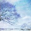 [ICONS TOURNAMENT]: Year 12 - Round 1 - Life Through a Window Winter10