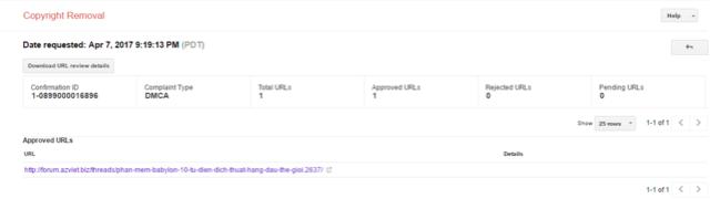 Hướng dẫn báo cáo website copy bài viết lên google DMCA Google16