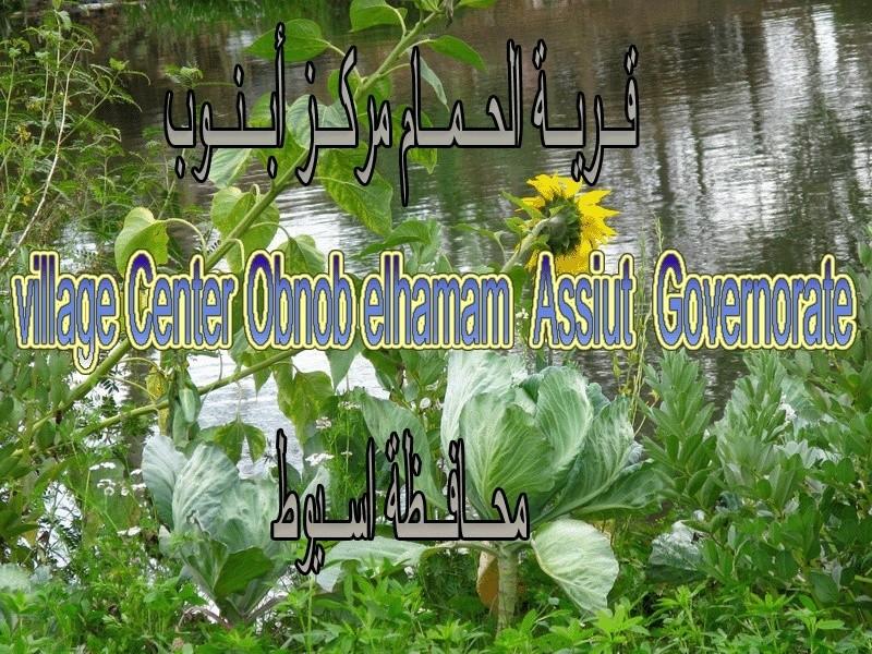 ◘◘◘ نبذة عن قرية الحمام أبنوب محافظة أسيوط ◘◘◘ 244