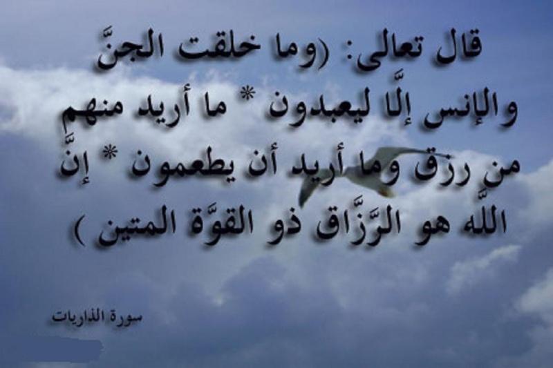 الأنس بالله عز وجل   738