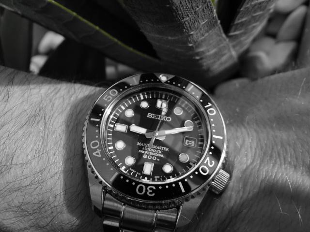 Dweller - Seiko MM300 ou  Rolex Sea Dweller 16600 - Page 4 Dsc03410