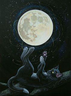 bonzour bonne zournée et bonne nuit notre ti nid za nous - Page 6 B97aa411