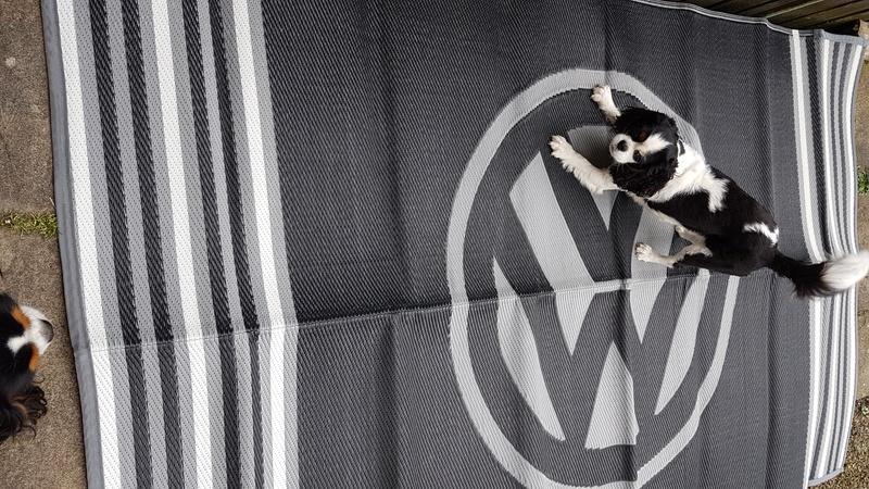 VW moroccan matting 20170411