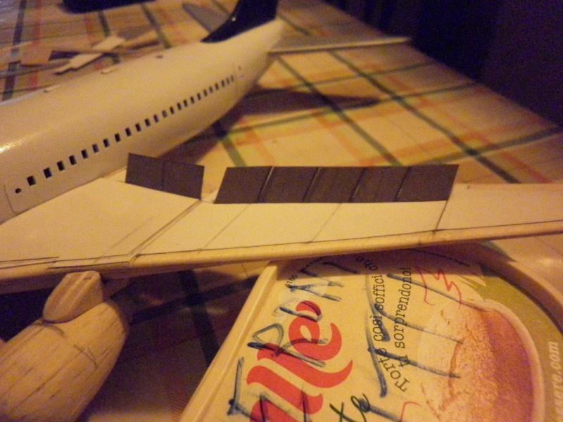Boeing 737-800 - Pagina 3 P1010024
