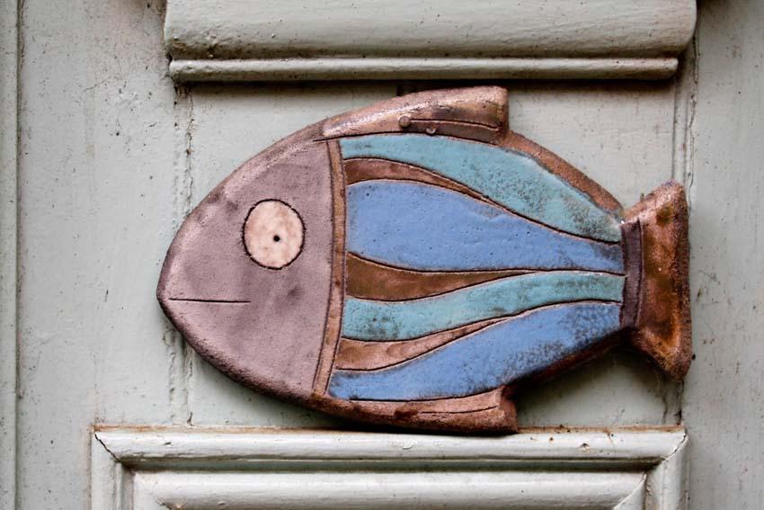 Image... du jour du poisson Dinan_21