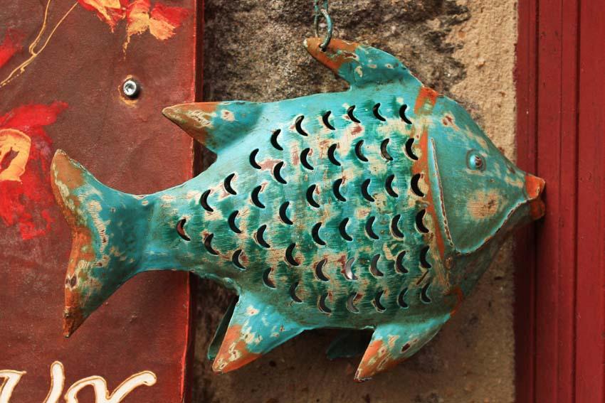 Image... du jour du poisson Dinan_22