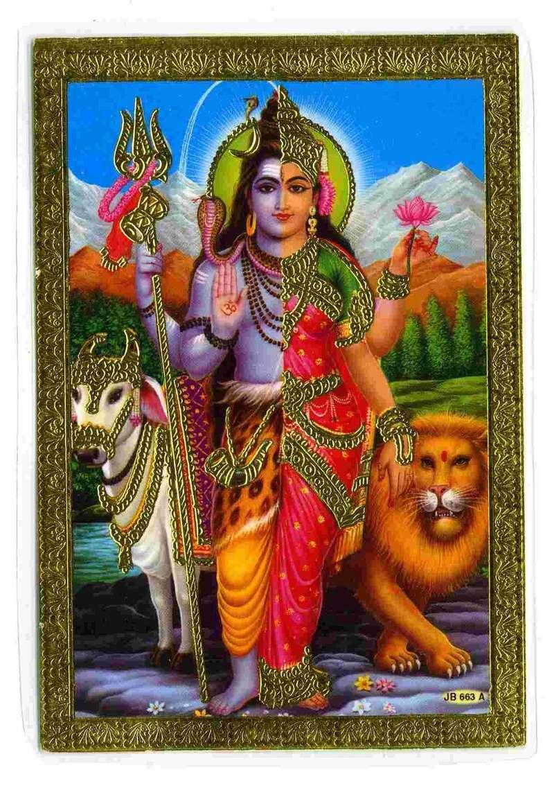 Basic Hatha Yoga and pranayama course notes anyone? - Page 2 Shivak10