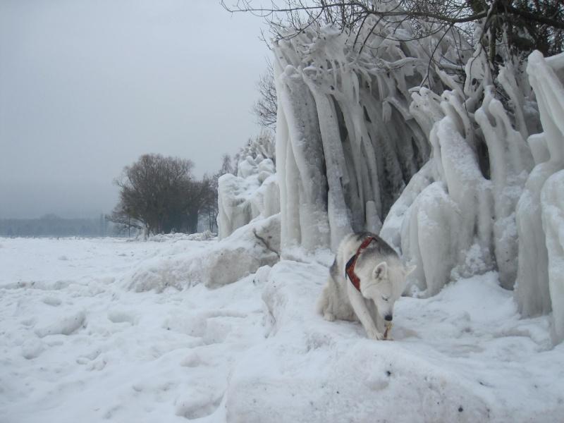 L'Europe connaîtra l'hiver le plus froid depuis 100 ans 3410