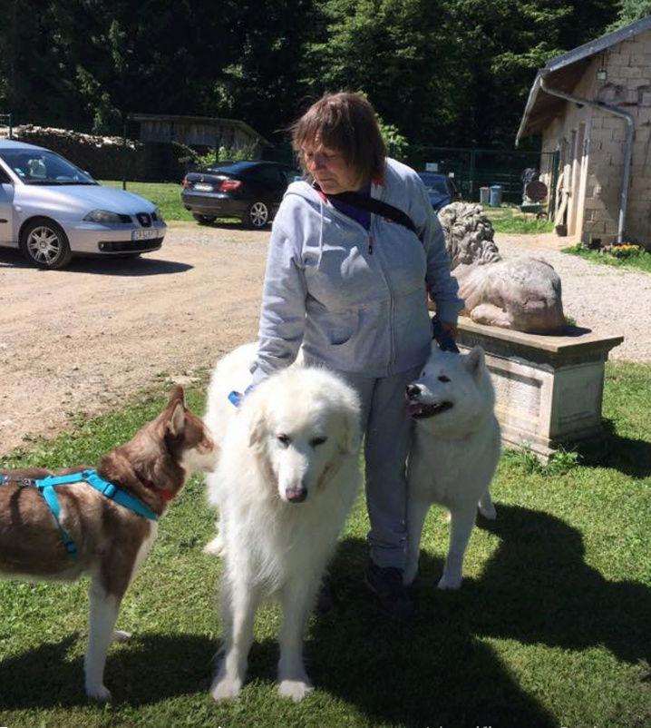 BELLE, jeune chienne Huskie, ASSO EDEN VALLEY Belle_10