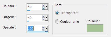 PSP - LES COCCINELLES Bouton10