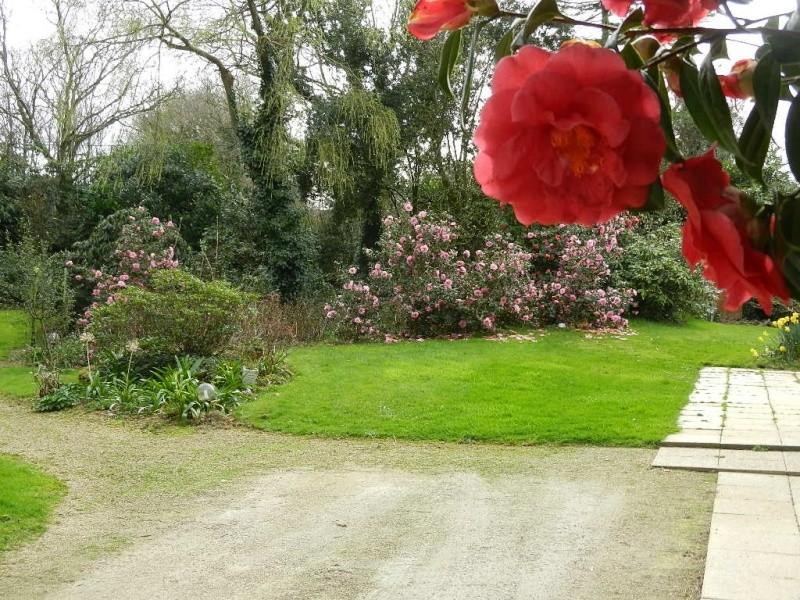 Aperçus de mon jardin Breton - Page 5 00215