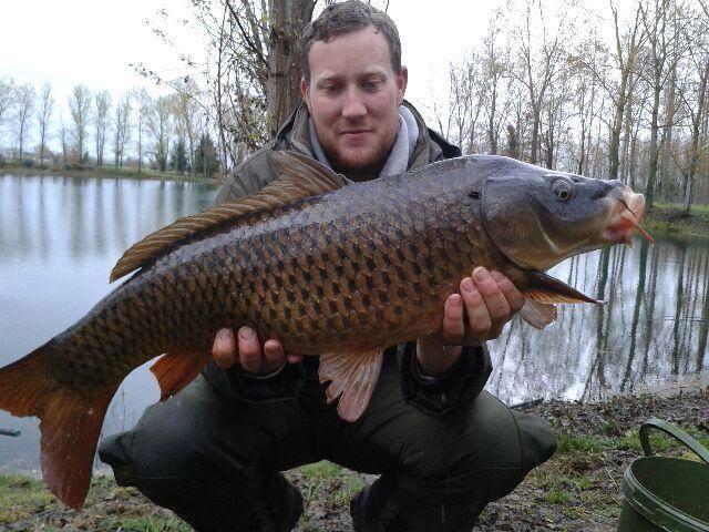 Les fishs pris au Domaine de la Longère 16559110