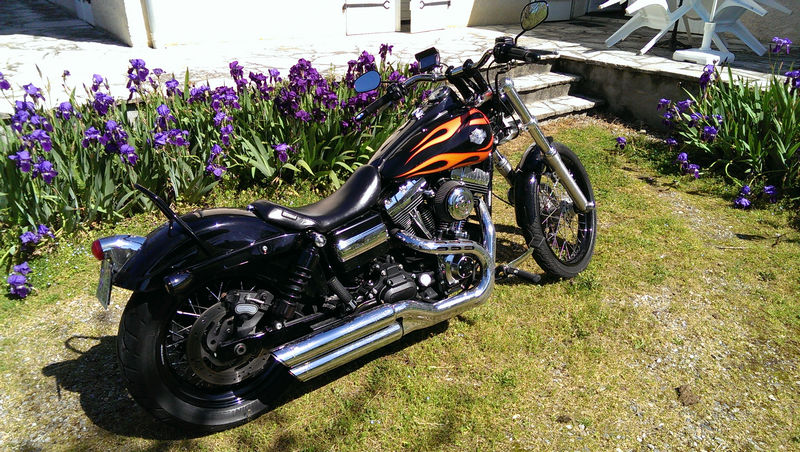 CVO Softail Deluxe 2014 Candy Cobalt: the Blue Diamond - Page 2 L_imag42