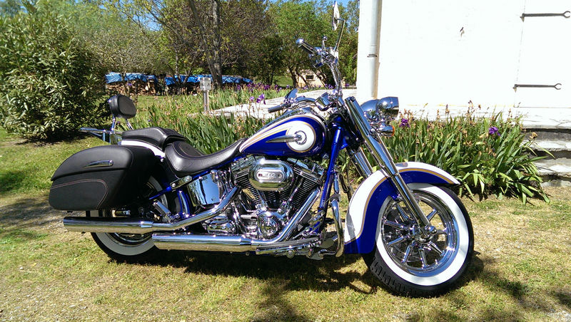 CVO Softail Deluxe 2014 Candy Cobalt: the Blue Diamond - Page 2 L_imag49