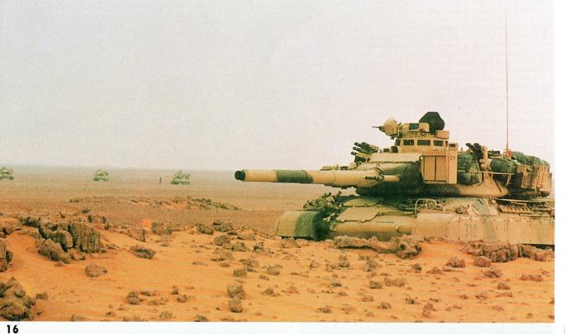 [HELLER] AMX30 B2 Division Daguet 1/35 [HELLER + Azimut] Img46811