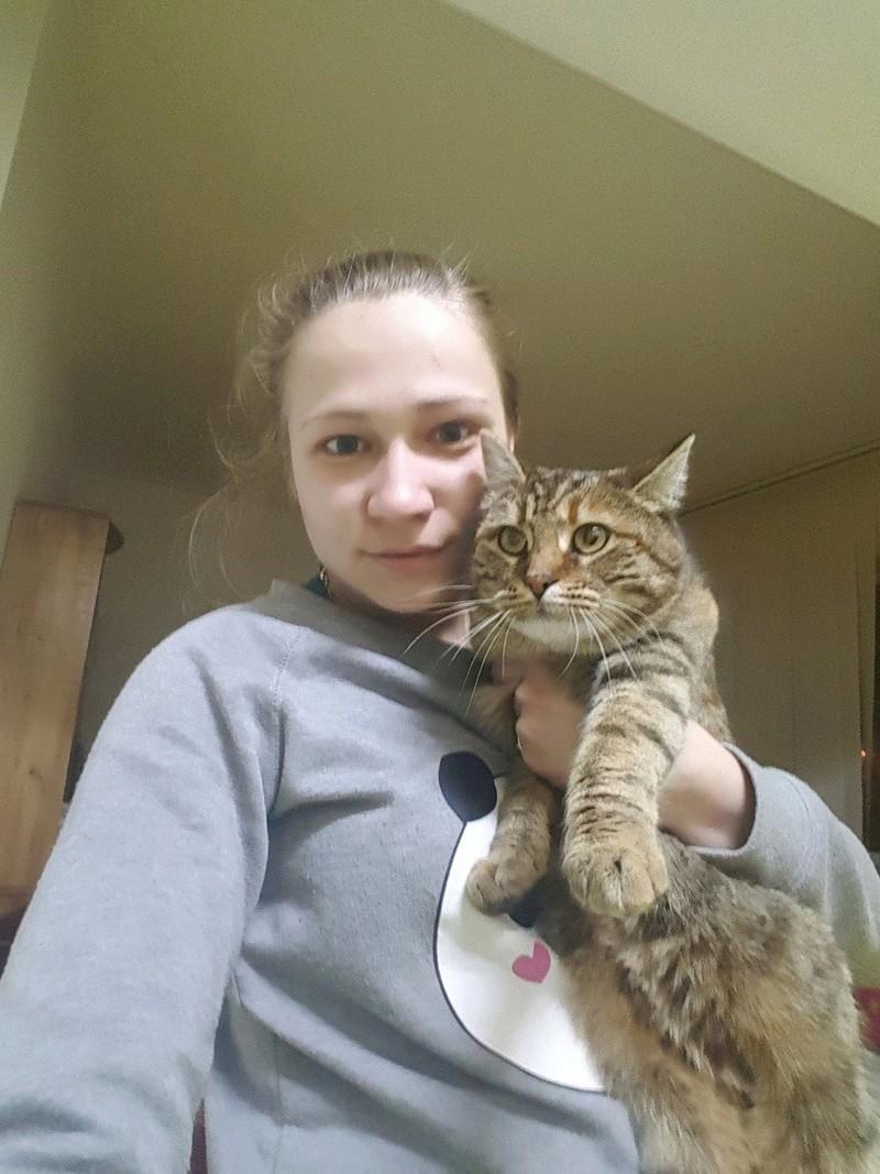 CHLOE, chatte femelle née env 2015 - Adelina (Iasi) - adoptée par mimipepsimaya (75) 17357711