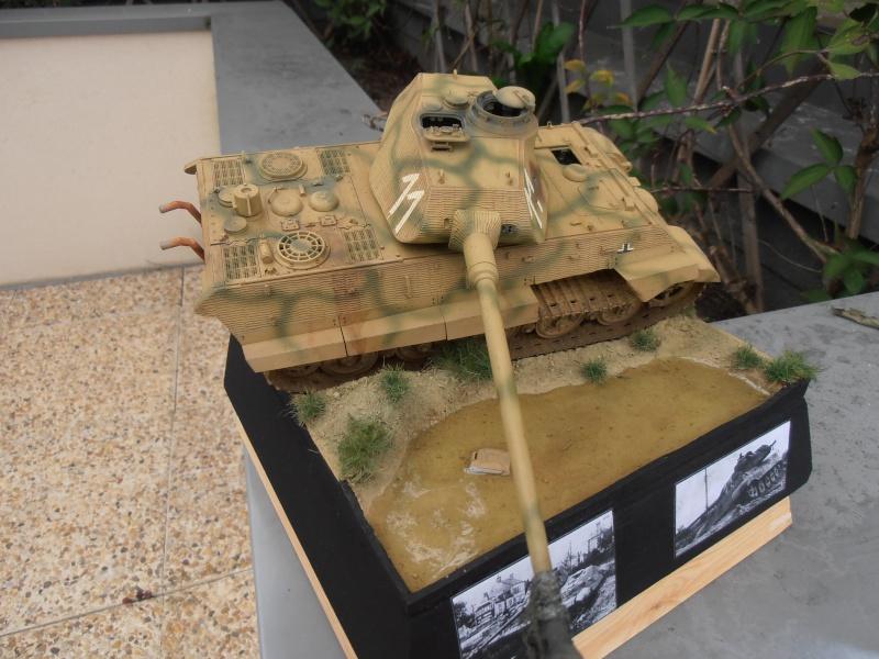 Mon tiger II( montage et dio termine ) [1/35 Tamiya] Pa230712