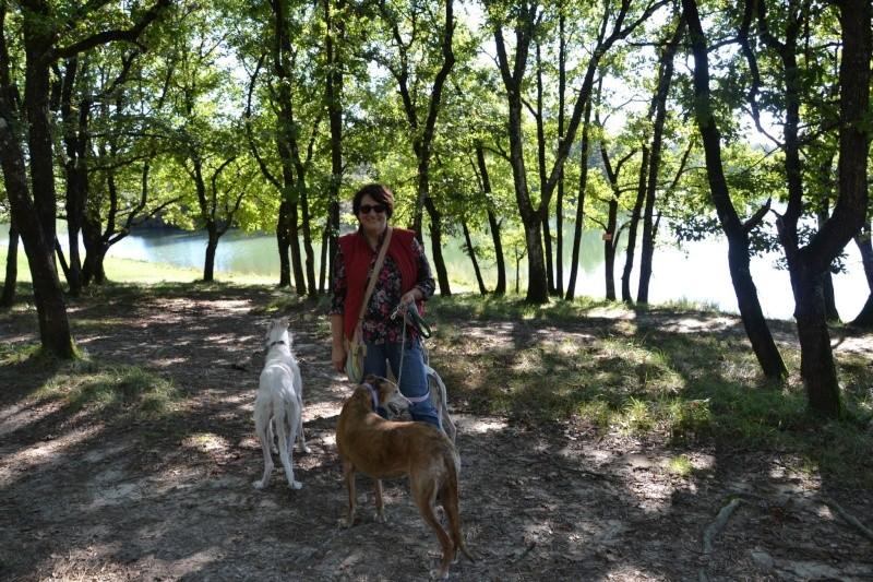 petite balade au lac de Gurson 12628810