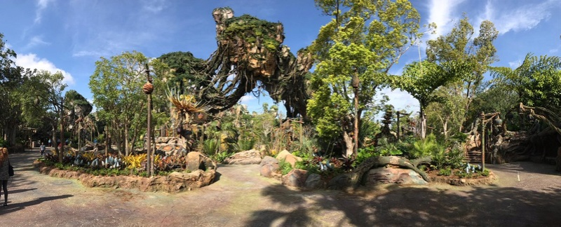 Pandora - The World of Avatar [Disney's Animal Kingdom - 2017] - Page 3 C-lzt810