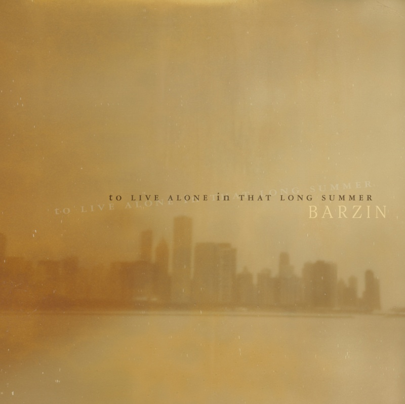 Prendiamocela con molta calma: Barzin - To Live Alone In That Long Summer (2014) Mono-810