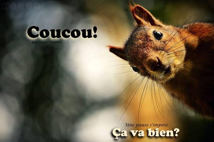 Bon Mercredi Coucou10