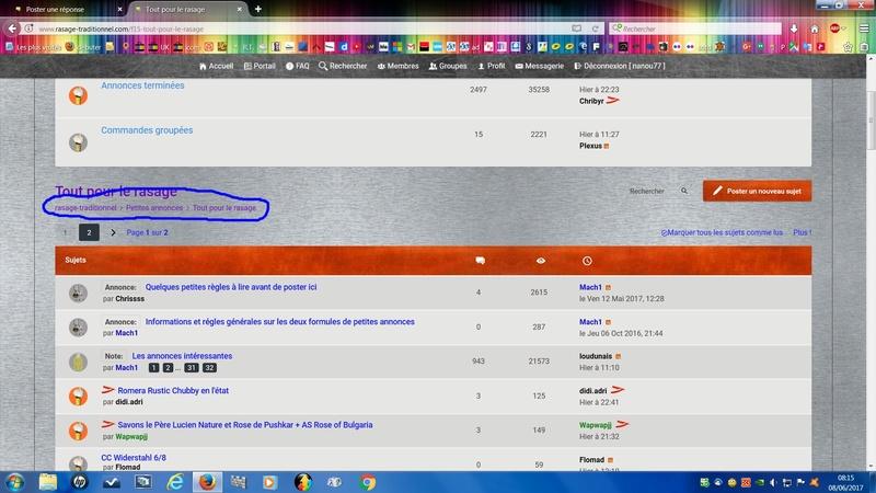 Nouvelle interface pour le forum... Et c'est reparti ! - Page 4 Ie10