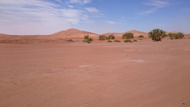 CR Maroc en Mai - JL, JM,Rodo, Speedy. Dsc_0071