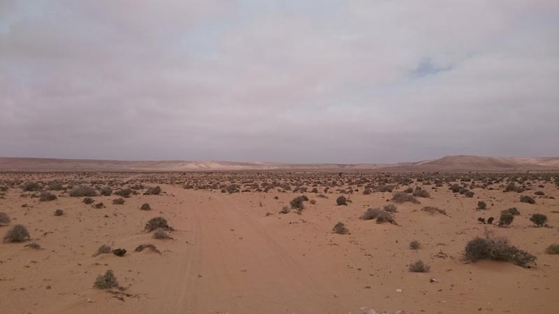 CR Maroc en Mai - JL, JM,Rodo, Speedy. - Page 2 Dsc_0136