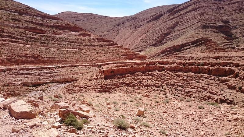 CR Maroc en Mai - JL, JM,Rodo, Speedy. - Page 2 Dsc_0213