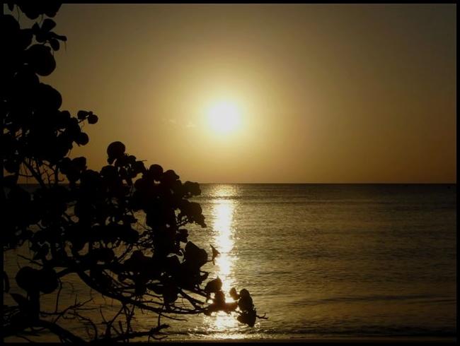 (Fil ouvert) Coucher de soleil P1010410