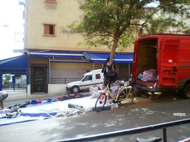 Anarchiste de pere en fils ou quand l'Italie contribue a la dégradation narturel du Maroc Mimoun26