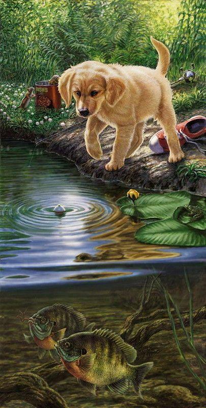 Au bord de l'eau. - Page 14 19124b10