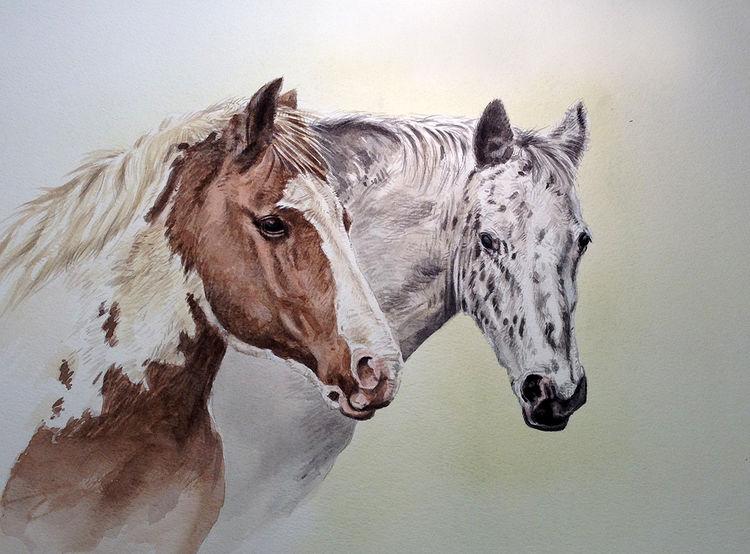 Les animaux peints à l'AQUARELLE - Page 6 43742810