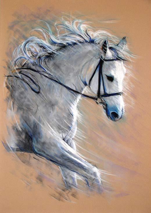 Les animaux peints à l'AQUARELLE - Page 5 66f82310