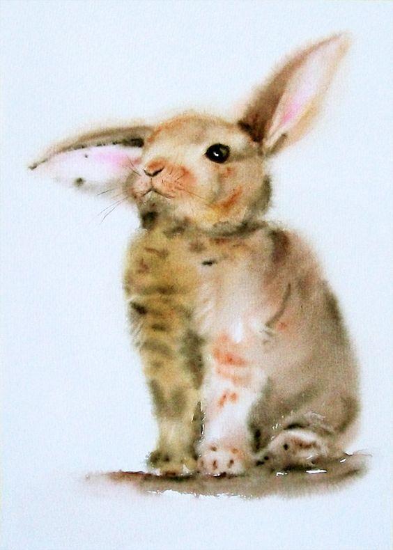 Les animaux peints à l'AQUARELLE - Page 5 7d620d10