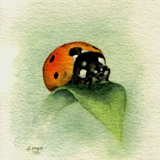 Les animaux peints à l'AQUARELLE - Page 6 8e1ba910