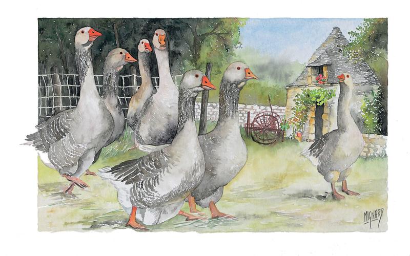 Les animaux peints à l'AQUARELLE - Page 6 Bories10