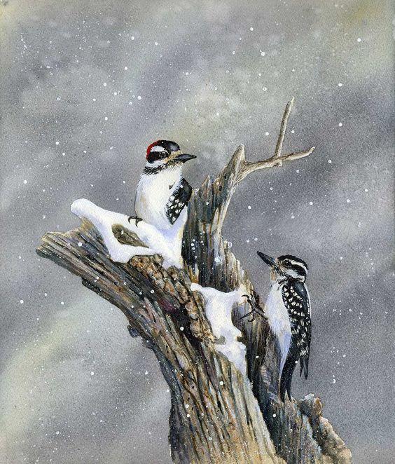 Les animaux peints à l'AQUARELLE - Page 6 D0a34910