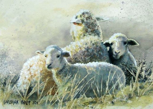 Les animaux peints à l'AQUARELLE - Page 6 Dsc02410