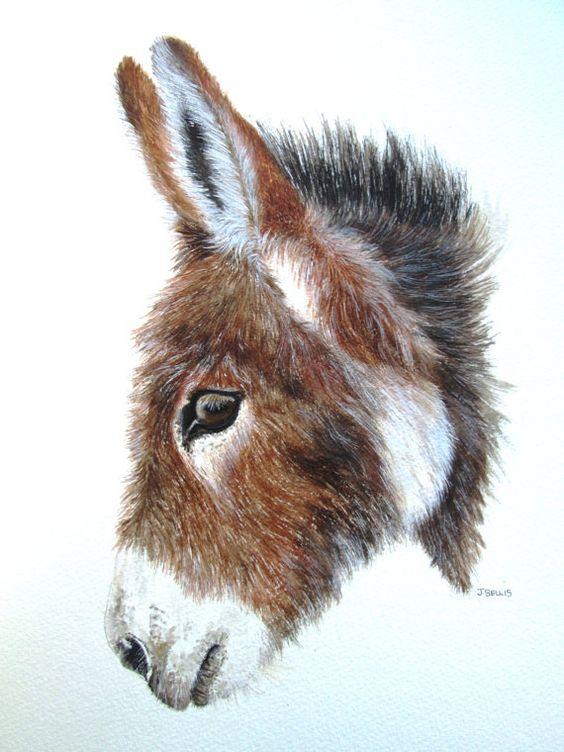 Les animaux peints à l'AQUARELLE - Page 5 E330fb10