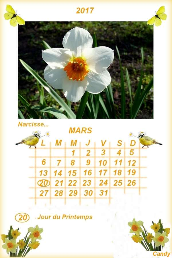 CALENDRIERS ORIGINAUX DES MOIS DE L ANNEE PAR ORDRE ALPHABETIQUE - Page 41 Mars_210
