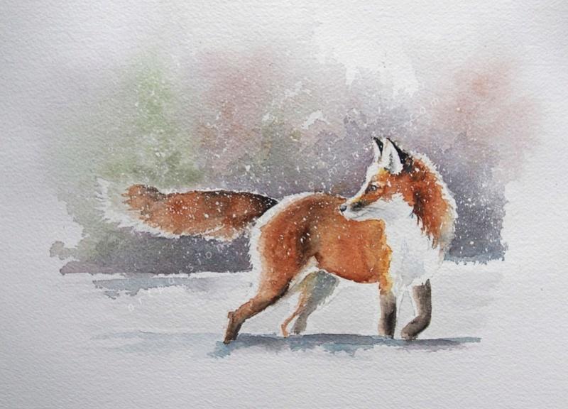 Les animaux peints à l'AQUARELLE - Page 5 Pc150310